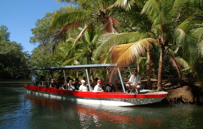 Damas Island Estuary Boat Trip